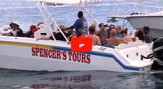 Spencer Ambrose Boat Tours Video